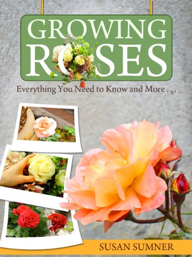 growing-and-planting-roses