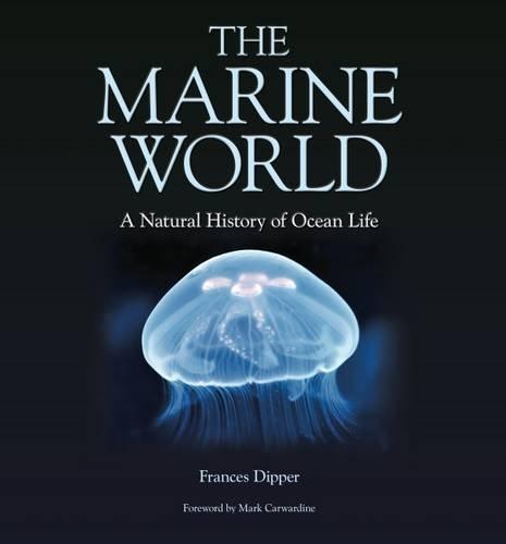marine-habitats