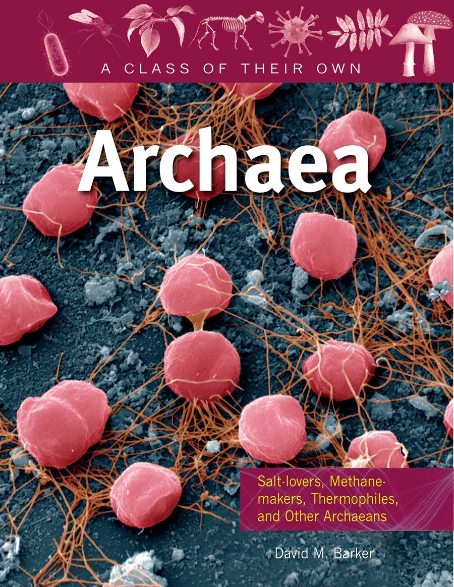 archaebacteria kingdom The definition of archaebacteria are primitive bacteria microorganisms that have one cell and live in environments that are severe, such as those that are extremely salty or hot.