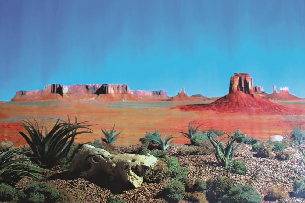 desert-regions
