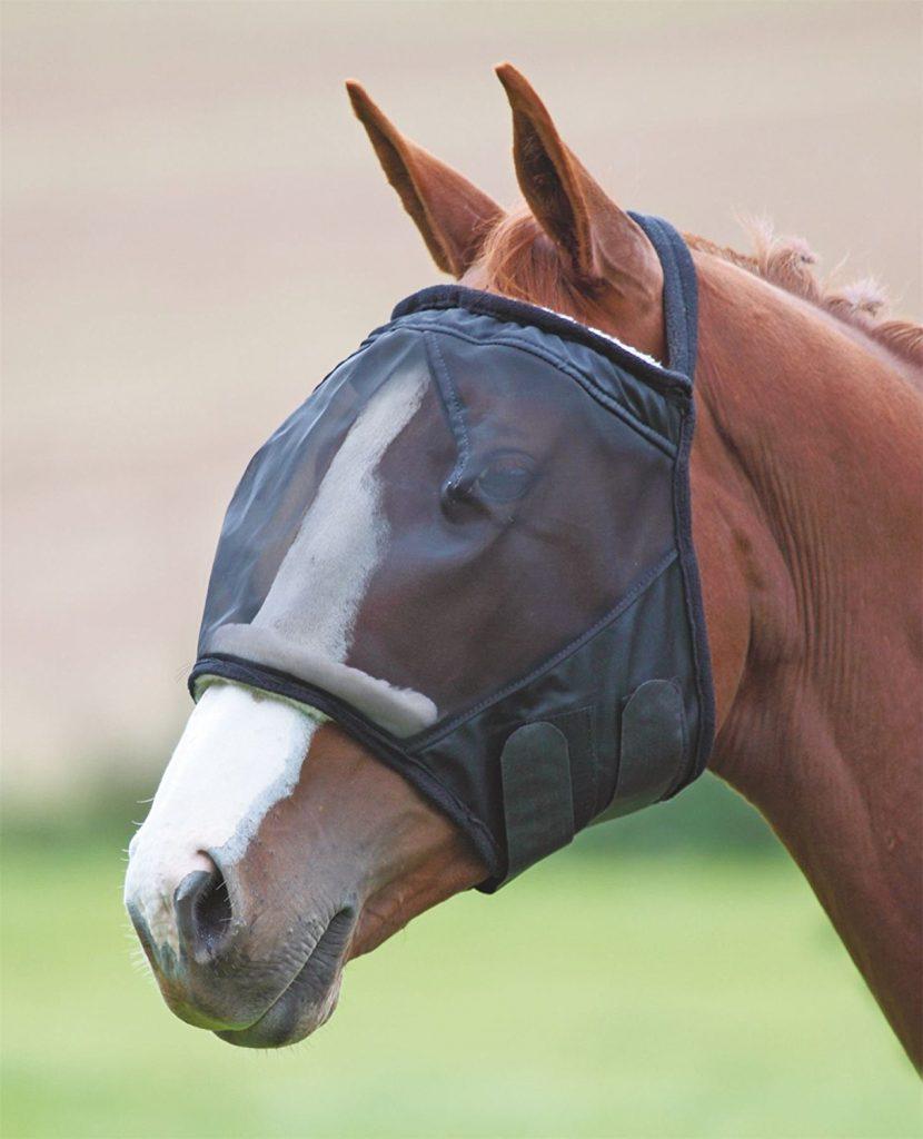 horse-mask