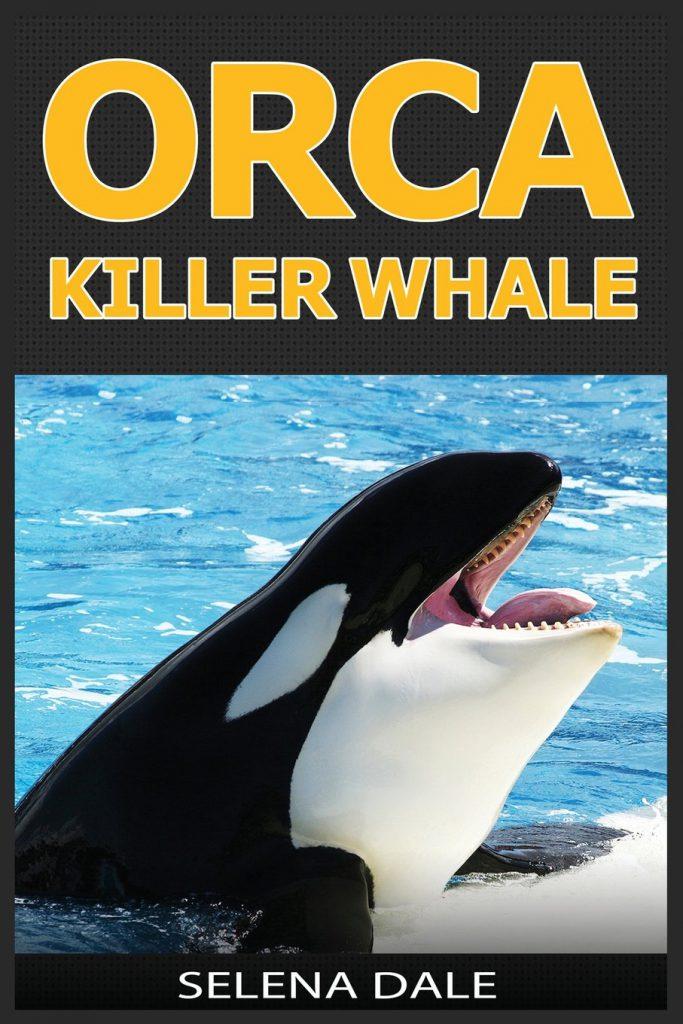 orcas-killer-whale