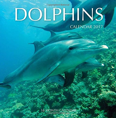 dolphin-calender